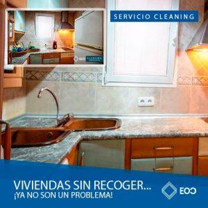 SERVICIO CLEANING
